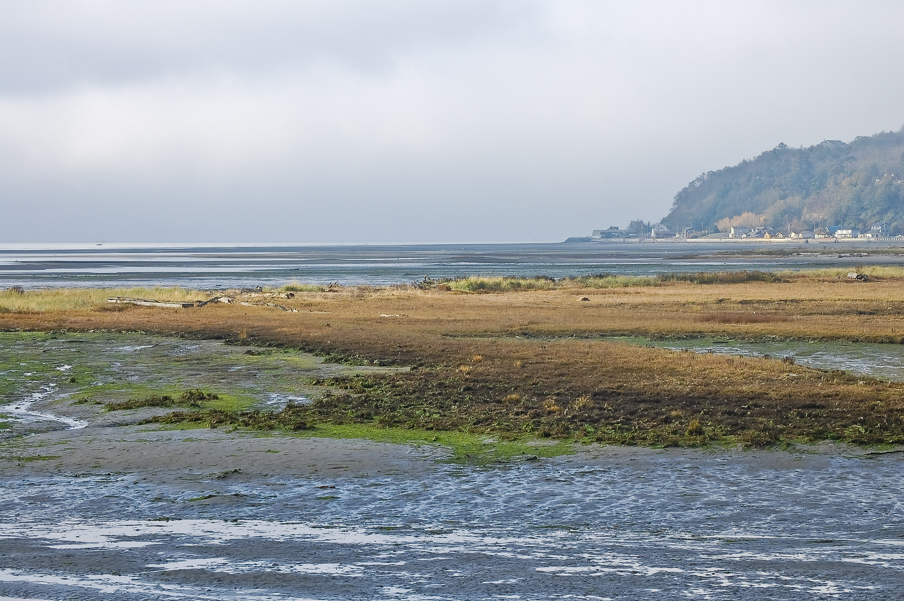 Tides And Currents About Whidbey