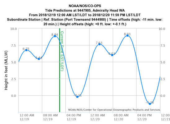Kinging Tides And Winds About Whidbey