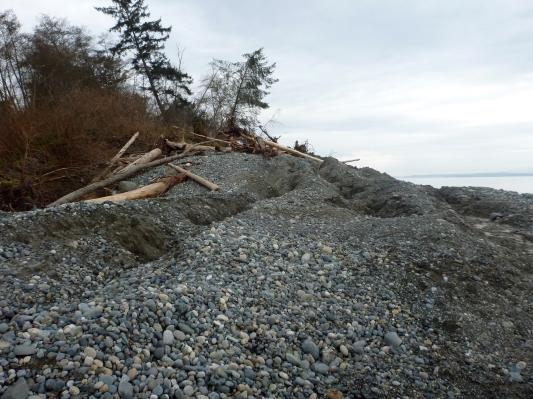 whidbey-island-landslide-stephen-slaughter-3_27_2013_0002